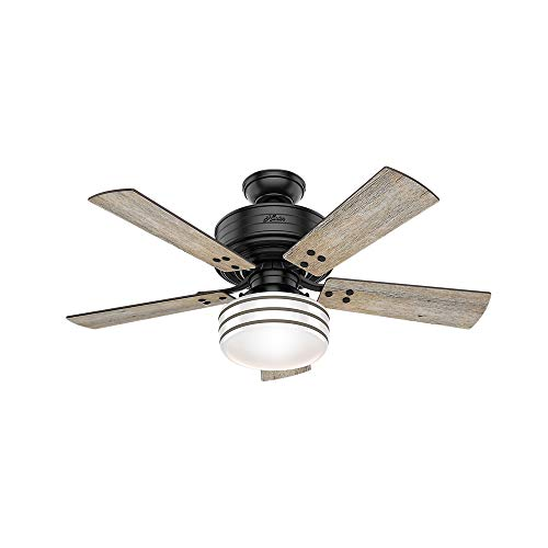 Hunter Indoor / Outdoor Ceiling Fan with LED Light and remote control - Cedar Key 44 inch, Black, 54149