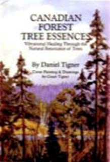 Best essence of tree Reviews