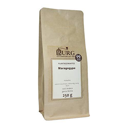BURG Maragogype Kaffee Gewicht 1000 g, Mahlgrad ungemahlen