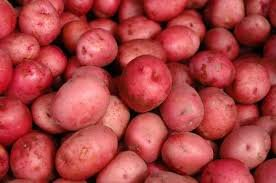 POTATOES RED FRESH PRODUCE 5 LBS