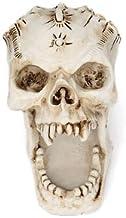 JJTOPJJ Western Skeleton Head Resins Makeups Jewelry Box Decorations Bars Homes Restaurants (White)