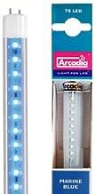 arcadia t5 led marine blue