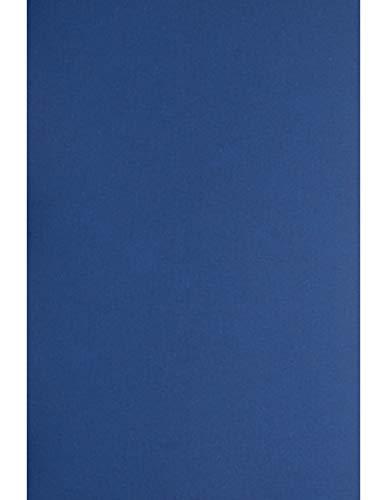 Netuno 10 Blatt Blau 330g Kreativ-Karton DIN A4 210x297 mm Plike Royal Blue Ton-Karton edel gummiartige Haptik Künstler-Karton bunt Foto-Karton Effektkarton elegant hochwertig zum Basteln Dekorieren