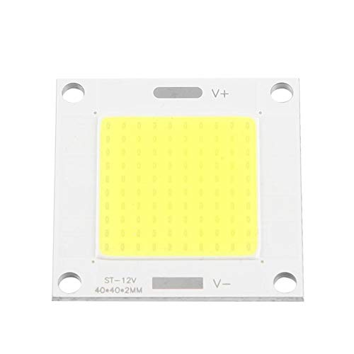 Riuty Pannello LED COB, 12-14 V 50 W LED Integrato Chip Light Panel Flood Lampada per proiettore Fai-da-Te Proiettore(Bianco)