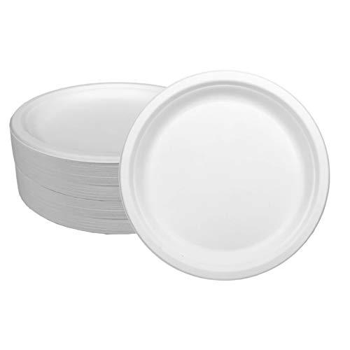 Ecorigin Platos Desechables de Papel de caña de azúcar. Pack de 100 Unidades y 26 cm. Platos Desechables biodegradables y compostables. Alternativa al plástico.