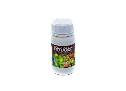 INTRUDER® Insectos/Oruga/Larvas/Trips; Plantas Interior/Ext