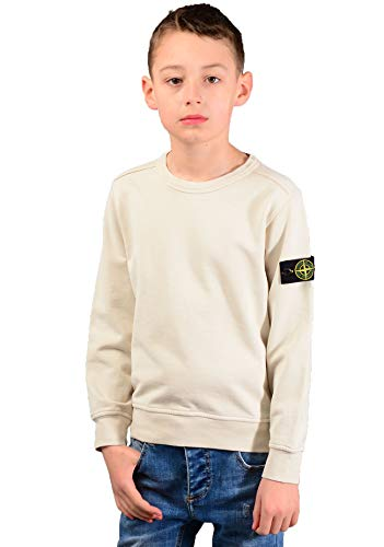 Stone Island Junior 61040 Sweatshirt in Beige