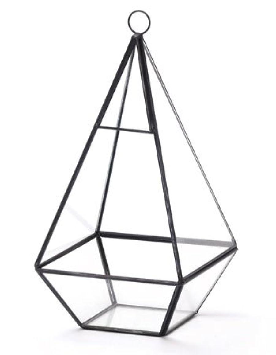 ラショナル極地連想多面体ガラスディスプレーケース テラリウム トライアングルL