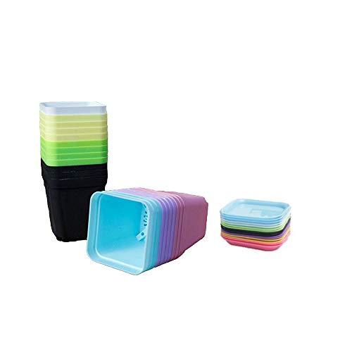 Fleymu Plastica Colorati Vasi Fiori con Vassoi Piante in Plastica Quadrato Plastica Quadrati Vasi Decorativi con Vassoi Ideale per Piante da Interno e da Esterno per Ufficio e Casa 7 Colori (20 Pezzo)