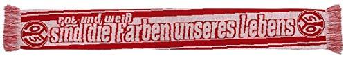 1. FSV Mainz 05 Schal Rot & Weiß