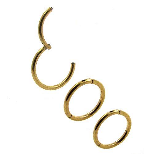 NewkeepsR 3PCS-0.8mm Gold Anodised Hinged Clicker Nose Hoop Rings, 20 Gauge 316L Steel Seamless Segment Sleeper Earrings Piercing-8/9/10mm
