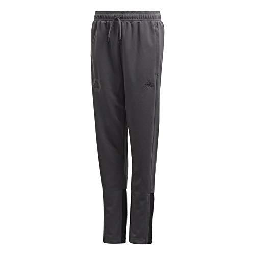 adidas Kinder Tan Training Pants Trainingshose, DGH solid Grey, 164