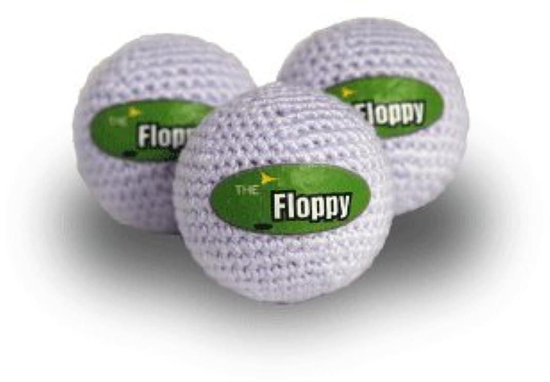 ピンポイント試み見分けるフロッピー Floppy 室内用練習ボール 3個入り [並行輸入品]