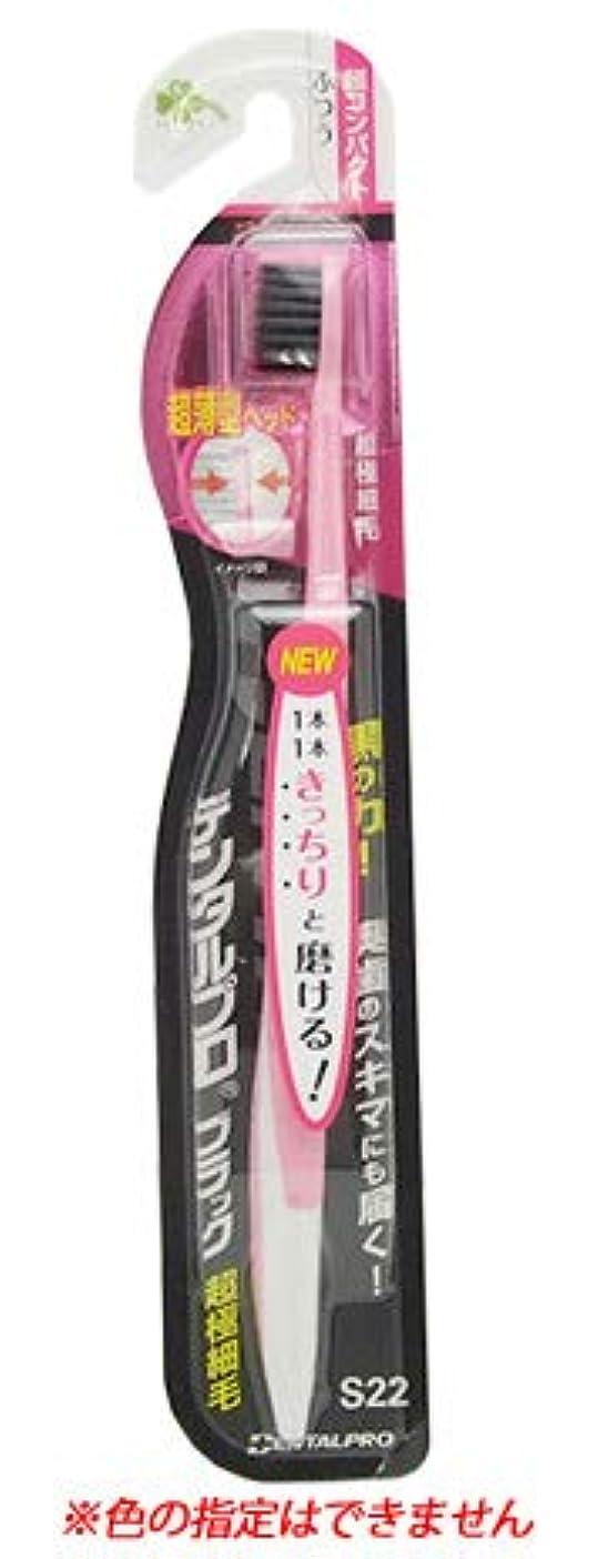 個人動機パイプくらしリズム デンタルプロ ブラック 超極細毛 超コンパクト ふつう S22 (1本) 大人用 歯ブラシ