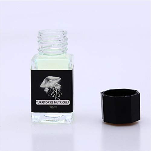 YOURPAI Tinta Invisible, Tinta Invisible sin Carbono de 18 ml para bolígrafo de inmersión de Vidrio.