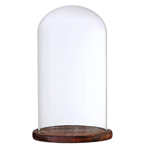 HomeDecTime Deko Glasglocke Glashaube mit Teller Glassturz Glasglosche DIY Landschaften Terrarium - Brauner F