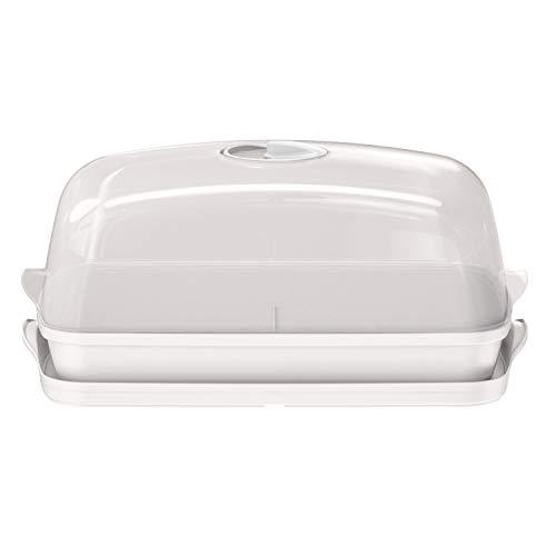 Prosperplast Respana Table Greenhouse kamerbroeikas kweekschaal tafel-mengbed wit