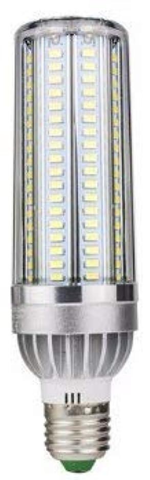 ビリー表示枠Bulbright 1個入 54W LED 水銀灯/コーン型電球 コーンライト 超高輝度 6000lm(300W水銀灯替わり) E26口金 3000K暖色 85-265V 倉庫 工場 看板 天井照明 (54W, 3000K-暖色)