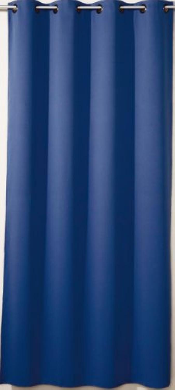 Ideenreich 2018-4 Schlaf gut, blickdichter Verdunkelungsvorhang, hellblau, 260x145 cm