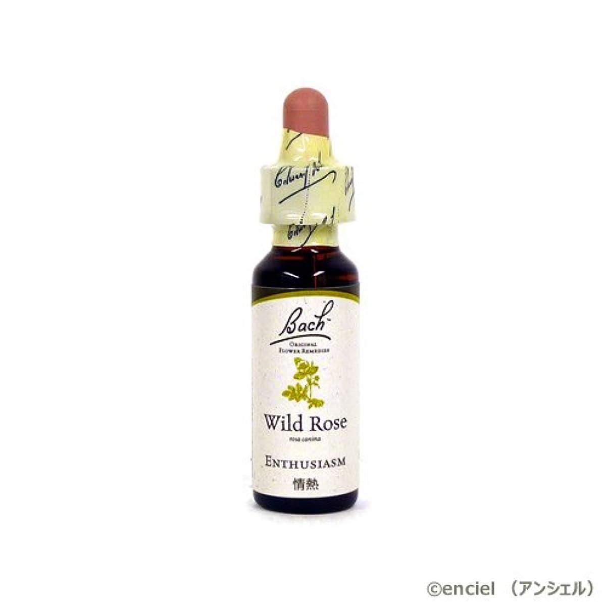 喉頭ジャンプする稚魚バッチフラワー レメディ ワイルドローズ 10ml グリセリンタイプ 日本国内正規品