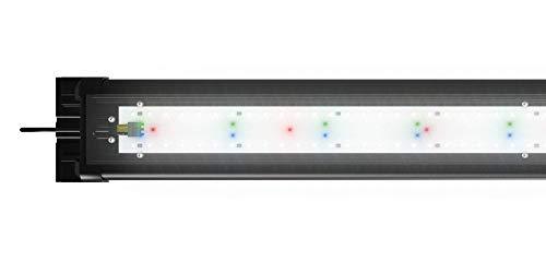 JUWEL Aquarium 48912 HeliaLux Spectrum 1200