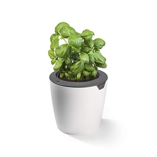 LAZY LEAF Blumentopf mit Bewässerungssystem - Ø 13 cm | 10 Bewässerungsstufen für die perfekte Wassermenge, Mit Tageslichtsensor (1 Topf)
