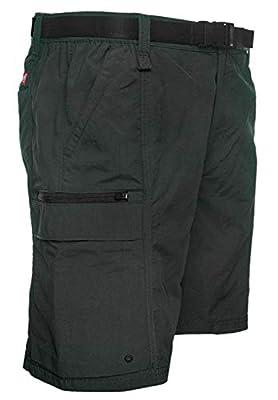 Coleman Men's Outdoor Hiking Nylon Cargo Shorts (Medium, Raven)