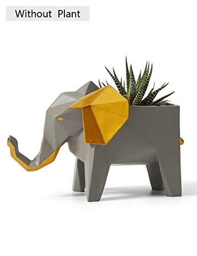 Amoy-Art Kaktus Sukkulenter Pflanzer Elefant Skulptur Figur Tier Pot Dekor für Haus Geschenk Andenken Resin Statue Giftbox 17cmL