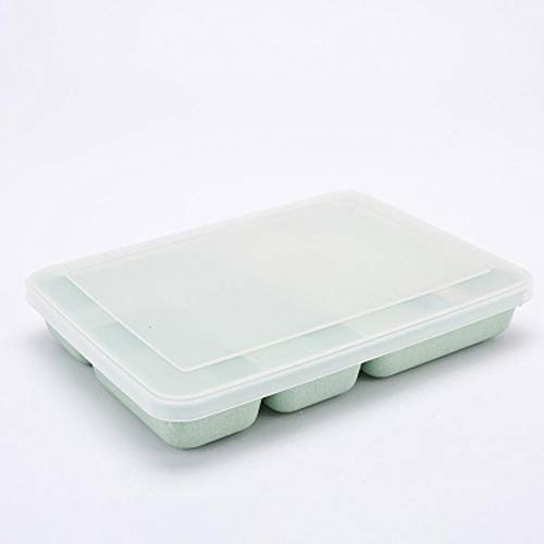 Ablerfly Bento Box 4 Compartiments Japonais Voyage Enfants Portable Bento Box Adulte Conteneur De Stockage des Aliments Vaisselle Ensemble-Boîte À Lunch Verte