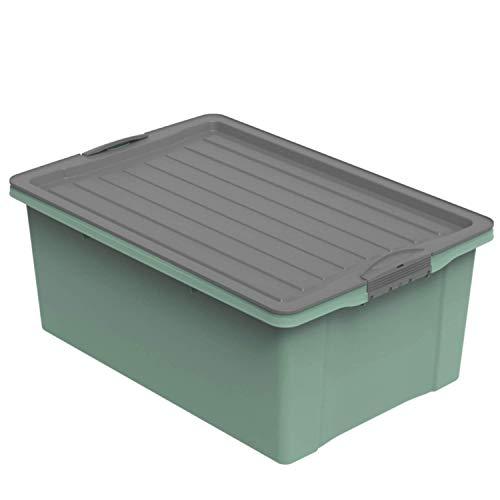 Rotho Compact Scatola con Coperchio, Plastica (PP Riciclato) senza BPA, Verde/Grigio (Antracite), A3/38 L, 57.0 x 40.0 x 25.0 cm