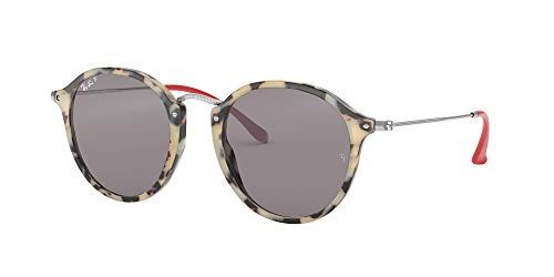 Fashion Shopping Ray-Ban Rb2447 Fleck Round Sunglasses