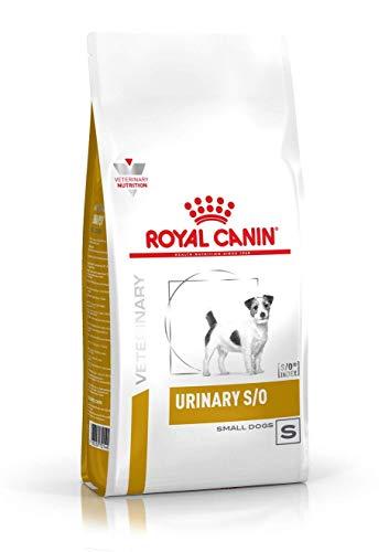 RoyalCanin Urinary S/O Small Dog 4 kg | Pienso Renal para Perros Adultos de Razas Pequeñas con Trastornos Urinarios | Comida Que Ayuda a Disolver Todos los Tipos de Cálculos de Fosfato Inorgánicos