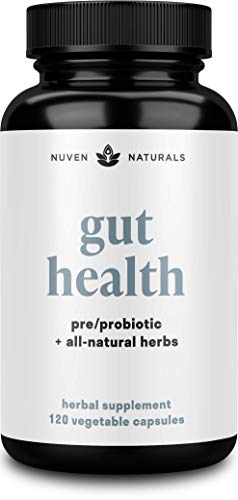 All-in-One Gut Health w/Premium Probiotics, Organic Prebiotics, Digestion-Boosting Herbs, and Adaptogens - Leaky Gut Repair Formula to Support Gut Lining, Aid in Digestion, and Promote Good Bacteria