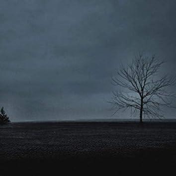 Trees at Sea