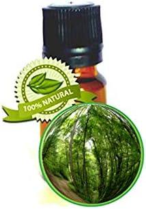 Top 10 Best birch bark essential oil Reviews