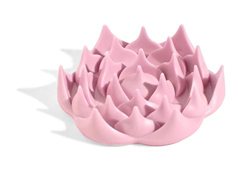Tapis d'acupression Champ de Fleurs - Soulage les douleurs de dos naturellement (Turquoise - Rose)