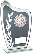 Grijs & Zilveren Glasplaat met Darts Insert Trofee 8 duim met Vrije Graveren JR3-TD929L