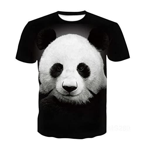 Cat Ragdoll Manga Corta t-Camiseta Media Manga 3D imprimió t -Shirt Tops Hombres Mujeres niños Mascota t-Camiseta Talla asiática 6xl-E23_SG