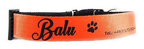 Hundehalsband I Halsband für Ihren Hund mit Wunschname oder Wunschtext (verstellbar für Halsumfang von 44-58 cm) I personalisierbar mit Namen und Telefonnummer