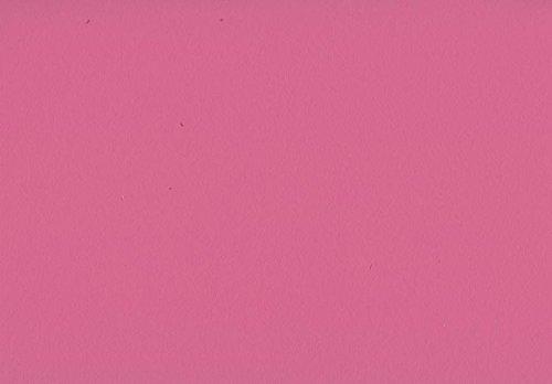 Volvox | Espressivo Lehmfarbe | Bunttöne 1 | Biofarbe | 2,5 Liter | 20 m² (fuchsia | 146)