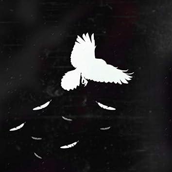 White Crow II