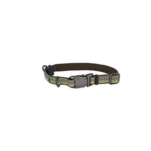 Coastal - K-9 Explorer - Reflective Adjustable Dog Collar, Fern, 5/8' x 08'-12'