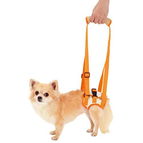ZH Hundestützgurt Hinterer Hebegurt,für alte Hunde hilft bei schlechter Stabilität, Gelenkverletzungen und Arthritis ACL Rehabilitation Rehab
