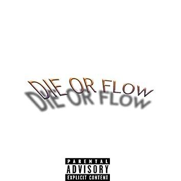 Die or Flow