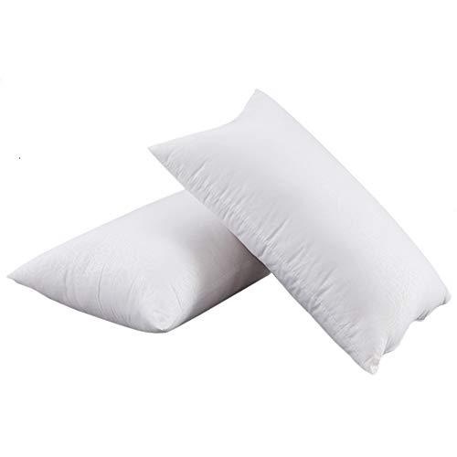 Ancdream Throw Pillow inserta, Juego de 2 Almohadas Ligeras de algodón PP para cojín de sofá (14 x 22 in / 35 x 55 cm)