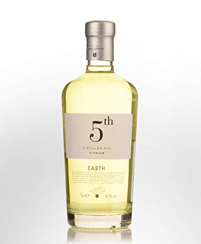5th Earth Gin Citrics 42{7fa51788c8ce9129928c999e9648f36447561e730a7d051f38df624a07fb8c91} 0,7l Flasche
