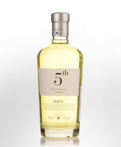 5th Earth Gin Citrics 42% 0,7l Flasche