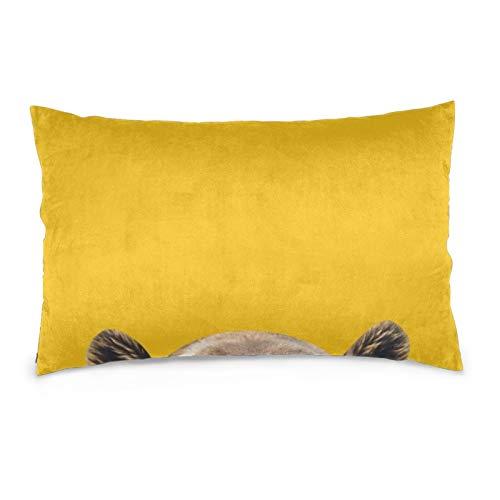 Lesif Fundas de cojín de terciopelo rectangulares fundas de almohada suaves decorativas para sofá, dormitorio, coche, 40,6 x 60,9 cm (amarillo oso)