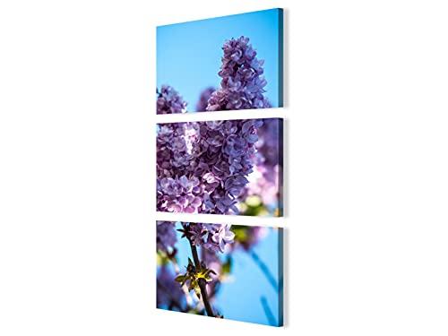 Foto Canvas Cuadros de Flores Modernos | Cuadros Verticales - Decoración Dormitorios - Cuadros Decoración Salón | Cuadro Vertical 3 Piezas - 40 x 96 cm sobre Bastidor de Madera Listos para Colgar