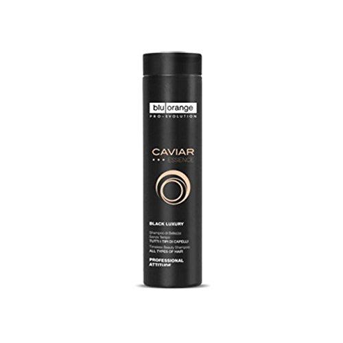 BLU ORANGE Caviar Essence Sublime Shampooing Pour le Cure Des Cheveux 200 ml